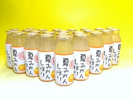 [№5226-0139]萩夏みかんしぼり 24本セット