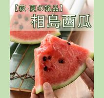 【萩・夏の銘品】相島西瓜 特大サイズ