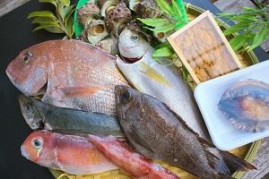 萩しーまーと鮮魚セットC(40,000円コース)