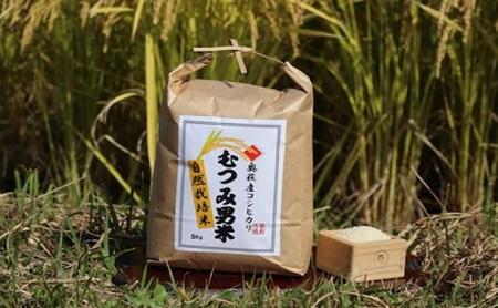 [№5226-0414]自然栽培 むつみ男米 白米 10kg