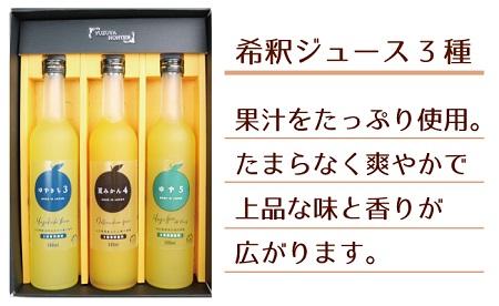 [№5226-0057]爽やか柑橘の濃厚ジュースセットA