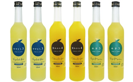 [№5226-0060]爽やか柑橘の濃厚ジュースセットB