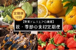 【野菜ソムリエプロ厳選】 萩・季節の食材 定期便【12回コース】