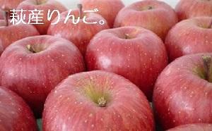 [№5226-0201]萩りんご(萩産)「ふじ」約6~7玉