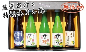 極旨果汁とこだわり味ぽん酢セット