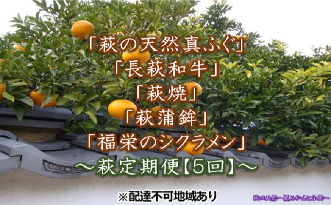 萩の天然真ふぐ・長萩和牛・萩蒲鉾・萩焼・シクラメン 【萩定期便5回】