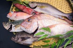 萩しーまーと鮮魚セットA(20,000円コース)