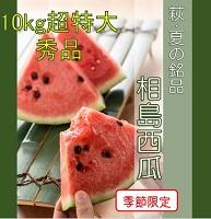 [№5226-0399]【萩・夏の銘品】相島 西瓜 約8kg・秀品