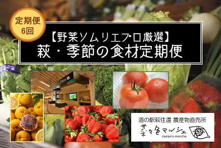 [№5226-0032]【野菜ソムリエプロ厳選】萩・季節の食材定期便【6回コース】